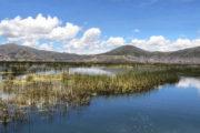 puno lago titicaca