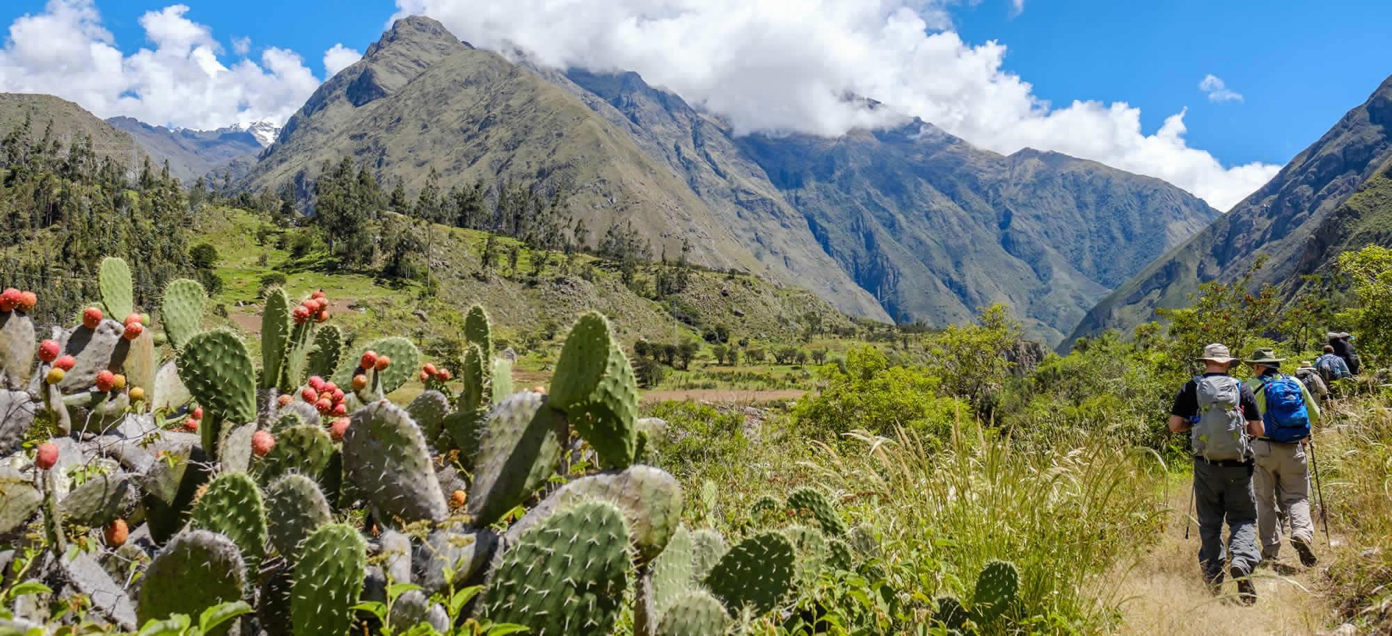 Chemin De L'inca