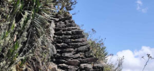 mountain machupicchu 2021
